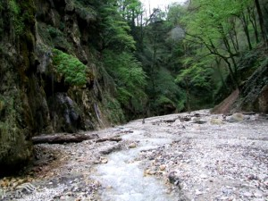 abshar-barankooh-gorgan (4)-1407143726